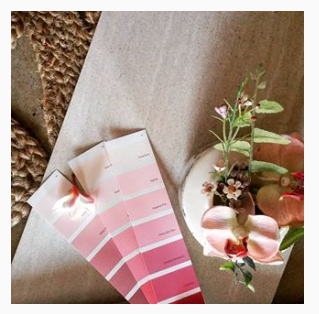 Lady Darwin Design instagram