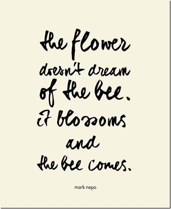 Always be the flower